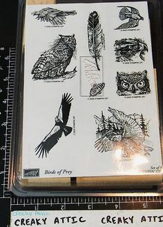 Stampin Up Birds of Prey 9 Rubber Stamps Owl Eagle Hawk
