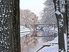 Winter - Begakanal, Brücke zwischen den Parks, Temeswar Romania, Parks, Abstract, Winter, Artwork, Pictures, Summary, Winter Time, Work Of Art