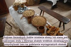 http://faktopedia.pl/szukaj/page/2?q=slowianie