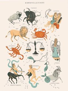 Zodiac constellations #design #illustration