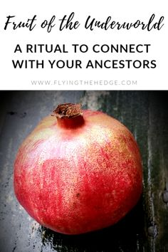 Fruit of the Underworld Ritual: A Ritual to Connect with Your Ancestors Wiccan Spells, Magic Spells, Magick, Hoodoo Spells, Samhain Traditions, Witchcraft For Beginners, Symbolic Representation, Witch Spell, Kitchen Witch