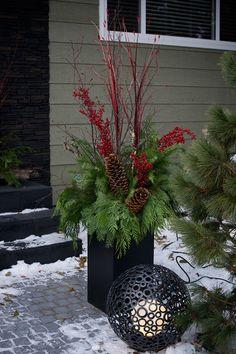 Christmas in Edmonton, Alberta Canada - contemporary - exterior - edmonton - Marie Hebson's interiorsBYDESIGN Inc.