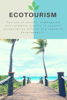 Ecotourism is surrounded in controversy. Before you book your next adventure, check out the following pros and cons to understand its full impact on the environment and local communities.