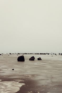 It makes me want to go out to one of the rocks and just lay on it.. and feel like nothing..