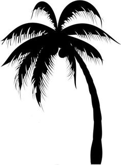 1000+ ideas abo... Palm Trees Outline