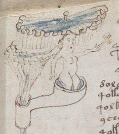 Yo diría que pertenece al manuscrito Voynich. Bartholomew of England bestiary - Szukaj w Google