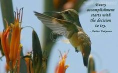View Full Size x Every accomplishment starts with the decision to try. ~ Author Unknown *** Photo Quoto: Sayings, quotes and quotations from Hummingbird Quotes, Hummingbird Symbolism, Achievement Quotes, Hope Symbol, All Quotes, Qoutes, Bullet Journal Ideas Pages, Note To Self, Food For Thought