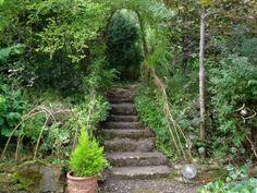 "Search Results for ""buddhism"" – Bealtaine Cottage, Ireland Garden Steps, Garden Bridge, Natural Ecosystem, Environmentalist, Organic Gardening, Beautiful Gardens, Ireland, Exterior, Outdoor Structures"