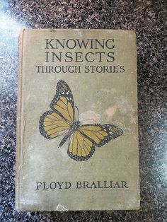 Knowing Insects Through Stories First 1st Edition 1918 Floyd Bralliar English