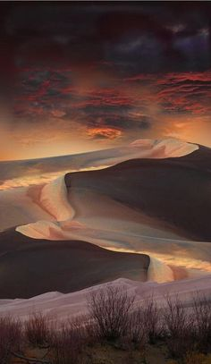 Beautiful dunes, lovely palette