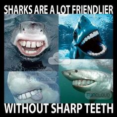 Sharks Happier with Teeth
