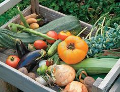 Planting a vegetable garden with meals in mind.  I need this.