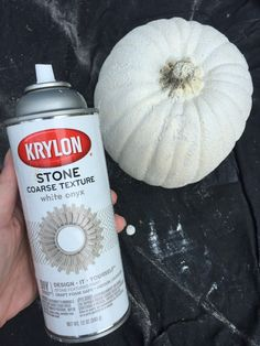 faux concrete pumpkin planter, made from a craft pumpkin! Fall Pumpkin Crafts, Diy Pumpkin, Faux Pumpkins, White Pumpkins, Halloween Porch, Halloween Pumpkins, Pumpkin Planter, Black Shutters, Fall Projects