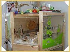 diy hamster cage - Google Search