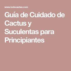 Guía de Cuidado de Cactus y Suculentas para Principiantes                                                                                                                                                                                 Más