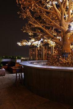 the tree bar on the terrace of SUSHISAMBA London