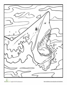 Shark Week Worksheets: Color the Fearsome Shark