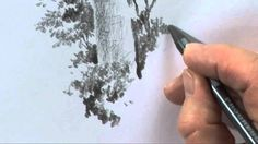 Improve your Trees in Pencil One - Part Two