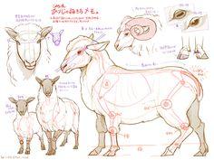 動物の描き方メモがとっても勉強になると話題! | エウレカ!eureka! - もふもふ動画