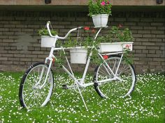 Another great garden bike