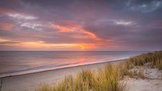 Windows 10, Spotlight, Netherlands, Grass, Sunrise, Earth, Clouds, Sky, Landscape
