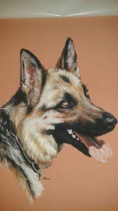 Isis, chien Berger Allemand, pastels secs