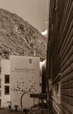 Hotel Theiners Garden - Pinned by Mak Khalaf A organic hotel in south tyrol italy. Travel woodHotelItalienItalySüdtirolTheiners GartenTrentino-Alto Adige/Südtirolblack and whitehillitalymountainnaturalorganicsouth tyroltree by ralfh