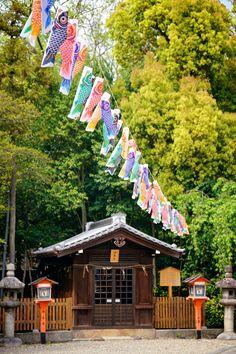 Children's Day @ Yasaka Shrine, Japan