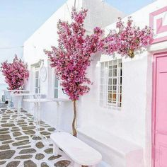 Naousa, Paros island, Cyclades, Greece