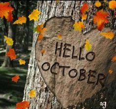 Hello October Images, October Pictures, Hello December, Fall Pictures, Welcome October Images, October Born, October Quotes, October Country, Heart Tree