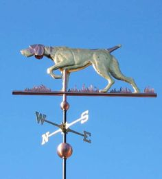 German Wirehaired PointerDog Weathervane by West Coast Weather Vanes. This copper German Wirehaired Pointer Dog weathervane features glass eyes, gold leafed patterns and distinctive tooling which gives the fur a realistic texture on the body.