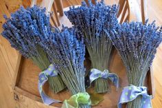 In Ireland, English lavender was a popular flower for the bride's bouquet, symbolizing love, loyalty, devotion and luck.