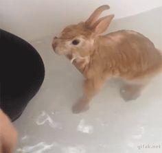 Splash me and I'll splash you back!!!