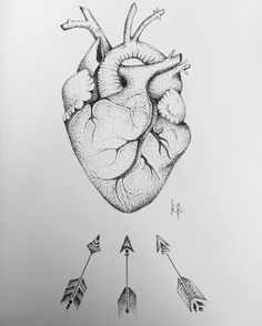Fresh WTFDotworkTattoo Find Fresh from the Web Anatomical heart #heart #arrows #anatomicalheart #anatomy #drawing #dotwork #pen #instapic #artwork #artoftheday #art kayleighpesticcio WTFDotWorkTattoo