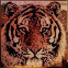 Tiger hama beads by h_nsku