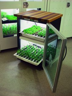 Urban Cultivator Home with trays extended. it look like same size of a washing machine. I defenitely need this