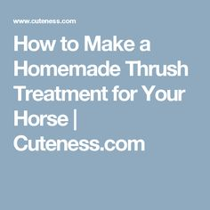 How to Make a Homemade Thrush Treatment for Your Horse | Cuteness.com