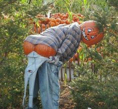15 Scarecrow Ideas for Fall Fun - Just Short of Crazy Looking for some fun scarecrow ideas? Look no further than these 15 wildy, wacky and fun ideas. Make A Scarecrow, Halloween Scarecrow, Halloween Pumpkins, Fall Halloween, Scarecrow Ideas, Funny Halloween, Scarecrow Festival, Vintage Halloween, Halloween Yard Art