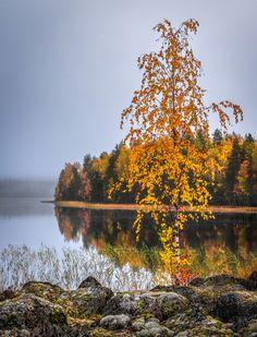 ***Autumn (Finland) by Asko Kuittinen af.