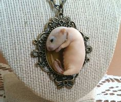 Your place to buy and sell all things handmade Brass Pendant, Pendant Necklace, Taxidermy Jewelry, Baby Mouse, Green Velvet, Brass Chain, Kitten, Creatures, Don't Judge