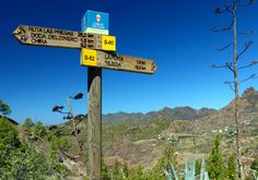 Up for a walk anyone?  more photos on http://www.vise.pictures  #canaries #walk #grancanaria #summer #bluesky #travel #pictures #topVISE