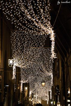 Christmas decorations on streets of Florence, Italy Christmas In America, Christmas In The City, Cozy Christmas, Outdoor Christmas, All Things Christmas, Christmas Holidays, Christmas Candles, Christmas Lights, Christmas Decorations