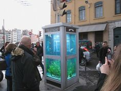 The 'phone booth aquarium' installations by french artist benedetto bufalino and lighting and designer benoit deseille are a playful transformation of common telephone boxes. The project was initiated in 2007 for lyon's festival of lights. Betta, Glass Cages, Amazing Aquariums, Urban Intervention, Weird Fish, Telephone Booth, Aquarium Design, Photo Images, Image Of The Day