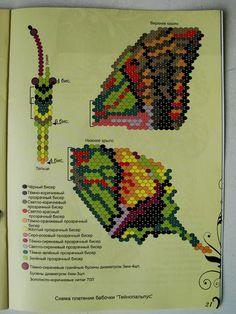 Бабочки. Большие сканы | 328 фотографий