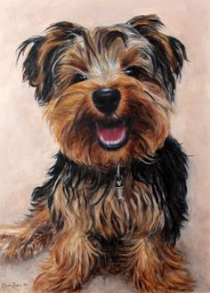 Teddy by Laura Quinn - Wildlife Art, Portraits and Pet Portraits