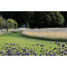 Meine Vision wird Garten | Peter Janke Gartenkonzepte | Hortvs