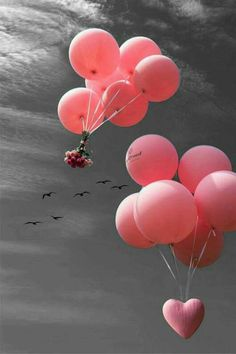 black and white color splash happy tuesday pics Pink Love, Pretty In Pink, Happy Tuesday Pics, Pastel Pink, Pink Purple, Wallpaper Huawei, Camera Wallpaper, Ballon Rose, Foto Newborn