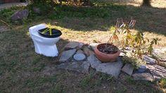 Qui a dit que je n'étais pas hospitalier ? Même dans le jardin, on peut accéder à des commodités et contempler le rhododendron !