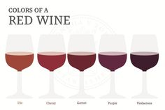 Shades of Red Wine