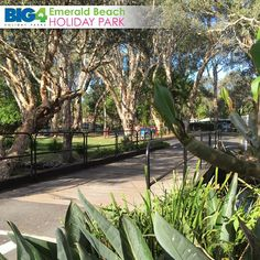 [Read]Nature Is Beneficial To Your Well-Being – Head To Emerald Beach For Your Family Holiday   #EBHP #EmeraldBeach #HolidayParks #BIG4 #CoffsHarbour #CoffsCoast #CaravanPark EmeraldBeachHoliday	 Web http://www.ebhp.com.au	 Facebook http://www.facebook.com/emeraldbeachhp	 Twitter http://twitter.com/emeraldbeachhp	 Instagram http://instagram.com/big4emeraldbeach